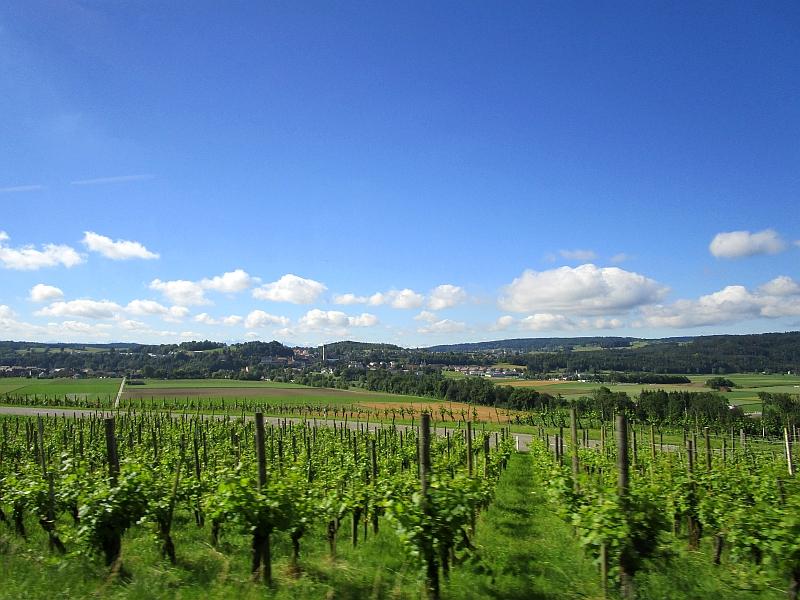 http://www.bahnreiseberichte.de/073-Drei-Tage-Schweiz/73-017Fahrt-Zuercher-Weinland.JPG
