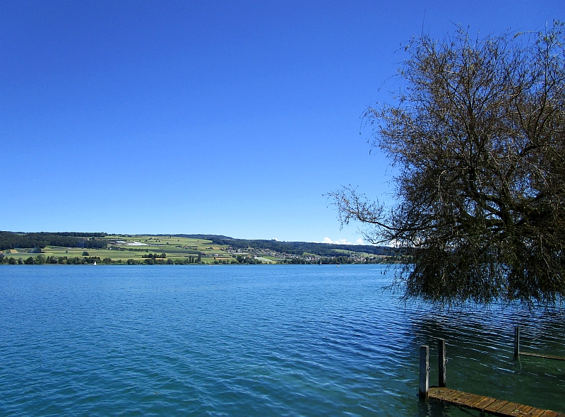 http://www.bahnreiseberichte.de/073-Drei-Tage-Schweiz/73-057Hallwilersee-Beinwil.JPG