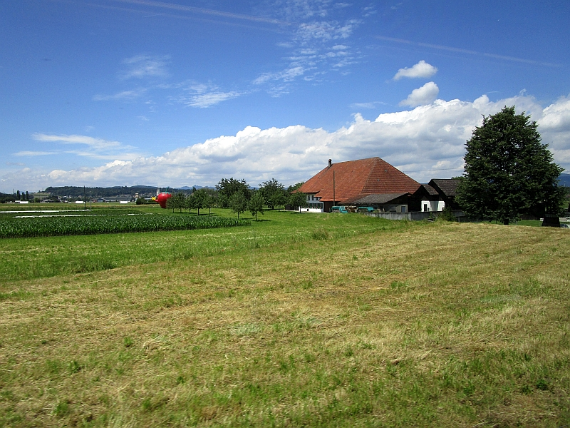 http://www.bahnreiseberichte.de/073-Drei-Tage-Schweiz/73-135Fahrt-Suhrentalbahn.JPG