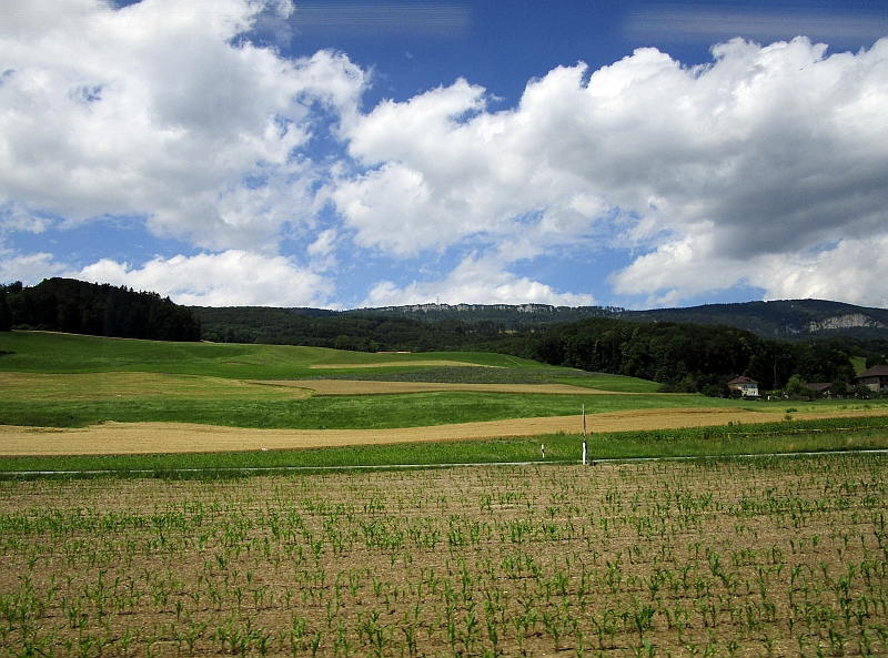 http://www.bahnreiseberichte.de/073-Drei-Tage-Schweiz/73-148Fahrt-Jurasuedfuss.JPG