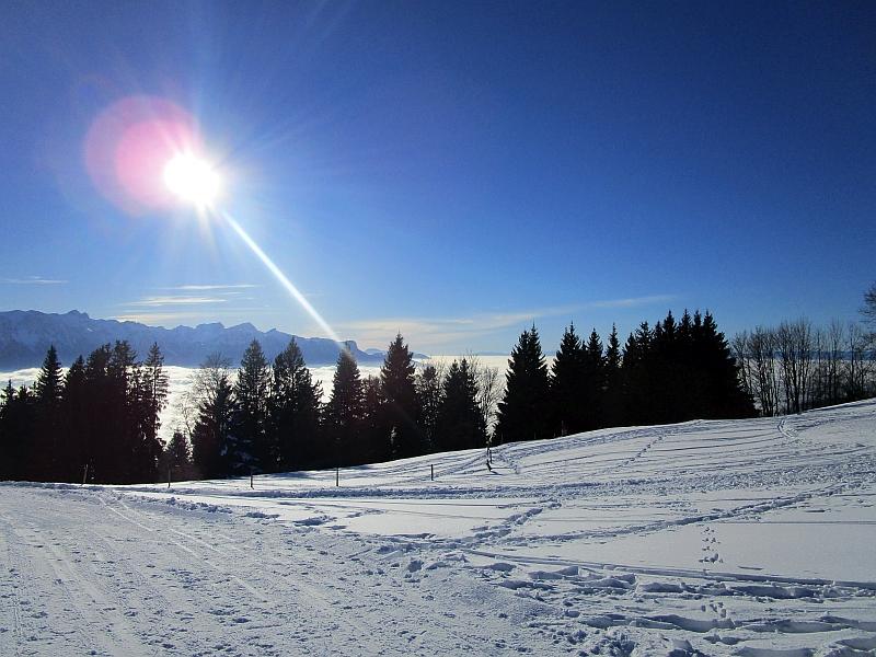 http://www.bahnreiseberichte.de/078-Montreux-Vevey-Riviera/78-45Les-Pleiades.JPG