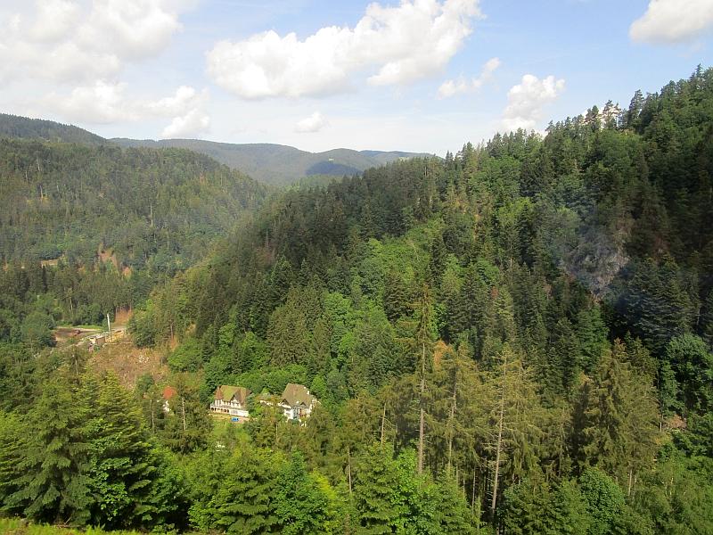 http://www.bahnreiseberichte.de/089-Kinzigtal/89-14Fahrt-Schwarzwaldbahn.JPG