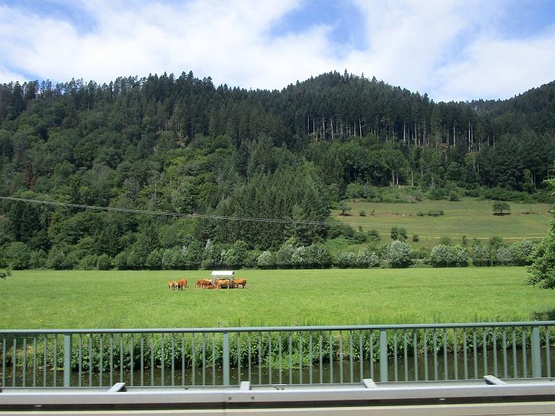 http://www.bahnreiseberichte.de/089-Kinzigtal/89-54Busfahrt-Schiltach-Alpirsbach.JPG