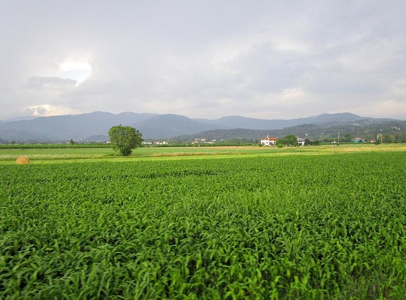 http://www.bahnreiseberichte.de/090-Achensee-Schafberg/90-054Fahrt-Udine-Cividale.JPG