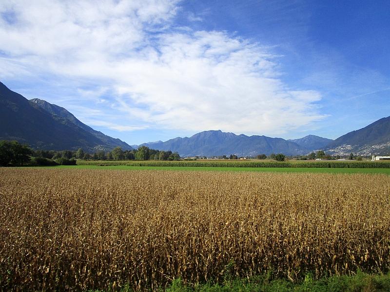 http://www.bahnreiseberichte.de/094-Serfaus-Mantua-Centovalli/94-111Fahrt-Magadinoebene.JPG
